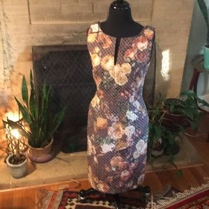 Vintage Style Anthropologie Pencil Dress